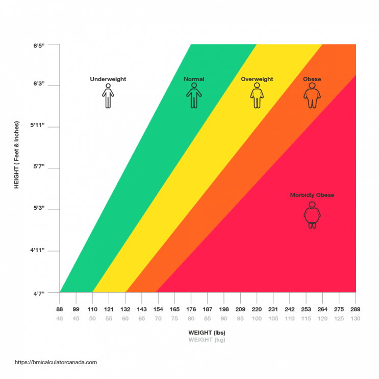 Adults BMI Chart Canada