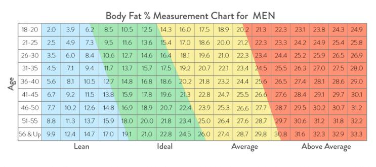 Body Fat % for Men